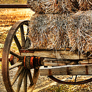 Hay Bales Photo Framed Prints - Vintage Hay Wagon Framed Print by Bonnie Bruno
