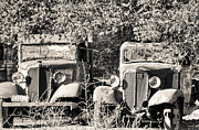 Old Pickup Photos - Vintage Old Trucks Black and White by Connie Cooper-Edwards
