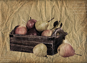 Text Photo Posters - Vintage pears Poster by Jane Rix