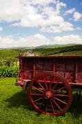 Wagon Wheels Photos - Vintage Red Wagon by Marilyn Hunt