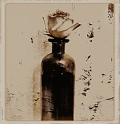 Glass Bottle Digital Art - Vintage Rose in a Bottle by Marsha Heiken