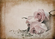 Netting Mixed Media - Vintage Roses by Trudy Wilkerson