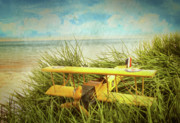 Cockpit Framed Prints - Vintage toy plane in tall grass at the beach Framed Print by Sandra Cunningham