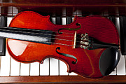 Violins Photos - Viola on piano keys by Garry Gay