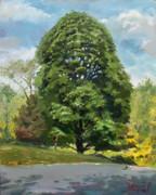 Ylli Haruni - Viola s Tree