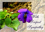 Sympathy Metal Prints - Violet Greeting card  Sympathy Metal Print by Debbie Portwood