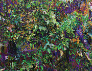 Lush Mixed Media Acrylic Prints - Violet Jungle Acrylic Print by Maria Eames