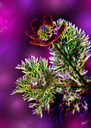 Weed Digital Art - Violet Labialize Flora by Bill Tiepelman