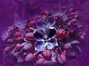 Lacy Floral Framed Prints - Violet Lilac Framed Print by Scott Hovind