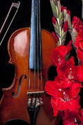 Red Gladiolus Photos - Violin and gladiolus by Garry Gay
