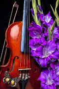 Concerts Framed Prints - Violin and purple glads Framed Print by Garry Gay