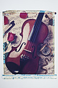 Music Time Posters - Violin and rose Poster by Garry Gay