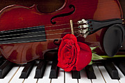 Dew Posters - Violin and rose on piano Poster by Garry Gay