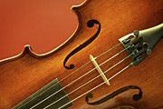 Musical Photos - Violin by Brandon Goldman