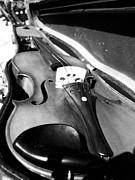 Debi Ling - Violin