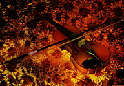 Violin Digital Art - Violin by Harald Dastis