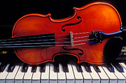 Music Metal Prints - Violin On Piano Keys Metal Print by Garry Gay