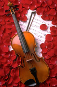 Violins Photos - Violin on sheet music with rose petals by Garry Gay