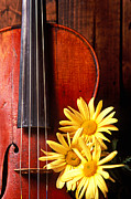 Violins Photos - Violin with daises  by Garry Gay