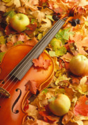 Autumn Photographs Framed Prints - Violin with Fallen Leaves Framed Print by Utah Images