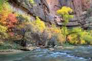 Cascades Prints - Virgin river at Sinawava temple Print by Pierre Leclerc