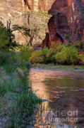 Virgin River Prints - Virgin River Reflection Print by Sandra Bronstein