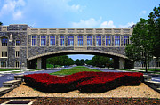 Virginia Tech Prints - Virginia Tech - Torgersen Bridge Print by Andrew Webb