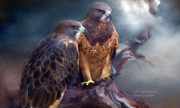 Wildlife Art Greeting Card Framed Prints - Vision Of The Hawk Framed Print by Carol Cavalaris