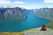 Visitor At Aurlandsfjord Print by Heiko Koehrer-Wagner
