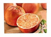 Kitchen Watercolor Paintings - Vitamin C by Irina Sztukowski