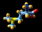 Derivative Prints - Vitamin U, Molecular Model Print by Dr Mark J. Winter
