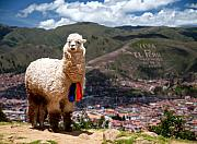 Featured Photos - Viva El Peru by Kareem Farooq