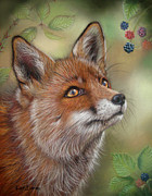Vixen Paintings - Vixen by Kat Davies