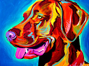 Dog Print Framed Prints - Vizsla - Dog Days Framed Print by Alicia VanNoy Call