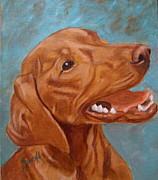 Dog Portrait Paintings - Vizsla by Maureen Diehl