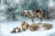 Wolves Prints - Vladimir Vanessa and the Vixens  Print by Julie L Hoddinott