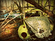 Rusted Cars Framed Prints - Volkswagen Cemetery Kentucky Framed Print by Cindy Wright