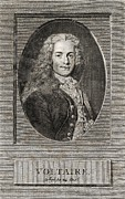 European Artwork Metal Prints - Voltaire, French Author Metal Print by Middle Temple Library