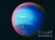 Neptune Posters - Voyager 2 Image Of The Planet Neptune Poster by NASA / Science Source