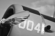 2011 Vna Stuart Airshow Wibada Photo Art - Vultee BT-13 Valiant in BW by Lynda Dawson-Youngclaus