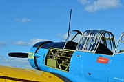 2011 Vna Stuart Airshow Wibada Photo Art - Vultee BT-13 Valiant  by Lynda Dawson-Youngclaus