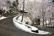 Snow - W Road in Winter by Tom and Pat Cory