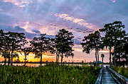 Mike Covington Art - Waccamaw River Sunset by Mike Covington