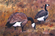 Geese Digital Art Posters - Waddle Waltz Poster by Diane Ellingham