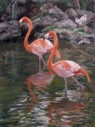 Flamingo Pastels Framed Prints - Wading Beauties Framed Print by Ann Caudle
