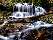 Matthew Winn - Wagner Falls in Spring