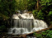 Matthew Winn - Wagner Falls in Summer II