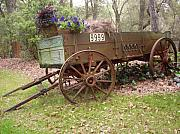 Wagon Wheels Originals - Wagon Garden in Full View by Warren Thompson