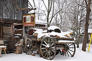 Wayne  Cook - Wagon in winter