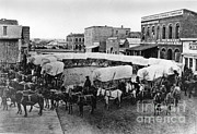 Covered Wagon Posters - Wagon Train Poster by Photo Researchers, Inc.